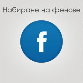 Набиране на 1000 фейсбук фенове