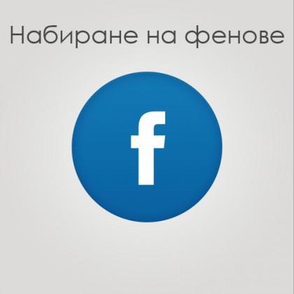 Набиране на 4000 фейсбук фенове  /  ВАЖНО!  ВРЕМЕННО Е СПРЯНА ТАЗИ УСЛУГА!